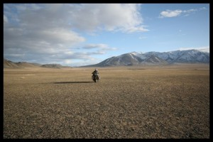 GPS says toad goes here.. - Mongolia