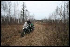 Long Grass Riding - Russia