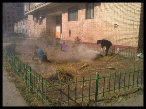 Gardening in Ulaanbaatar seems to consist of burning everything